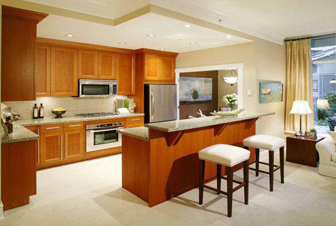 камины в современном дизайне современные квартиры